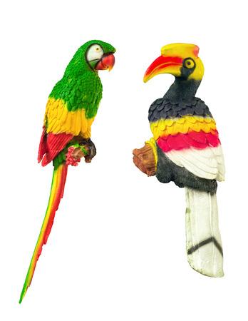 Parrot and hornbills photo