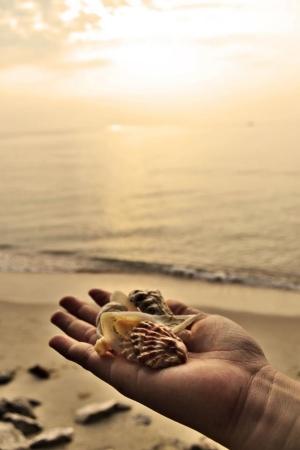 singly: Sea on my dream