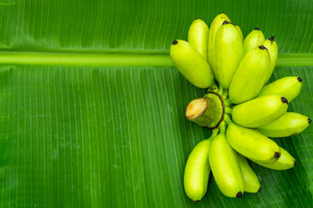 Top view green banana  green leaf banana on background