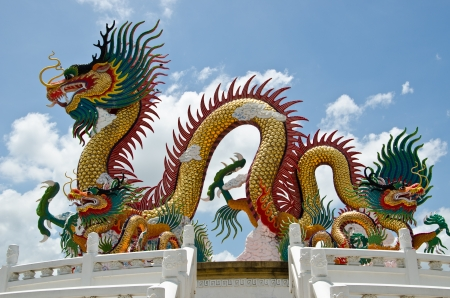 green dragon: Chinese dragon