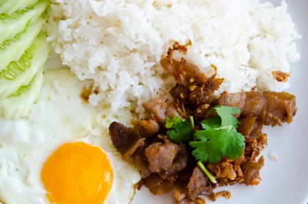 fried pork and rice photo
