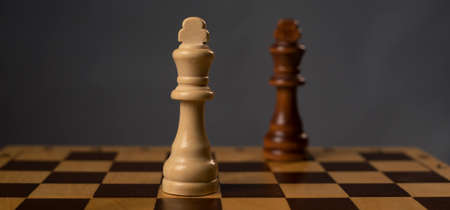 Two kings on chessboard. Confrontation concept. Imagens