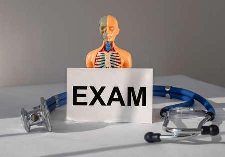 Medical exam concept. Inner organs examination and checkup