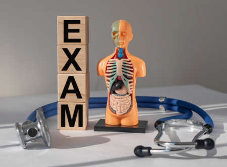 Medical exam concept. Inner organs examination and check up Stock Photo