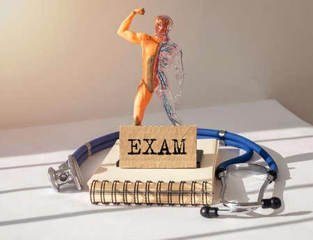 Medical exam concept. Inscription on paper. Inner organs examination.