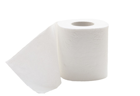 Beautiful toilet paper photo