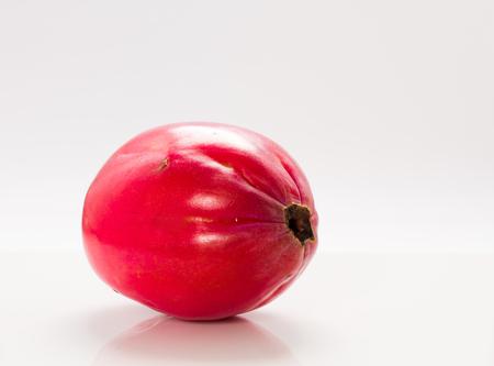 Beautiful photo of fruit apple cactus on a white background   Stock Photo