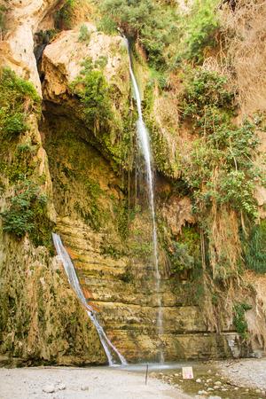 ein: Ein Gedi spring in the Dead Sea area, Israel.
