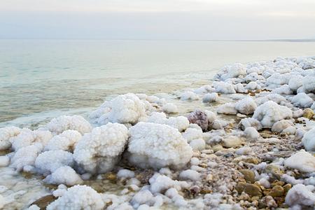 dead: Beautiful photo coast of the Dead Sea , Israel .