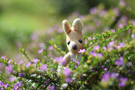 elfin: Kangaroo doll in elfin herb