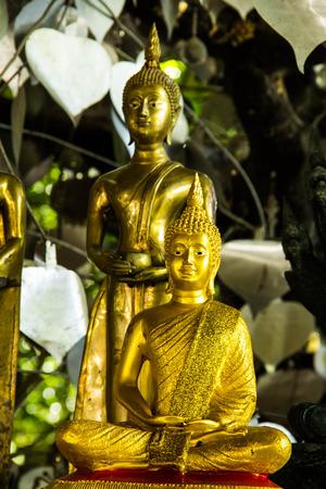 largesse: Buddha statue in Wat Pa Thamma Utthayan, Khonkean, Thailand