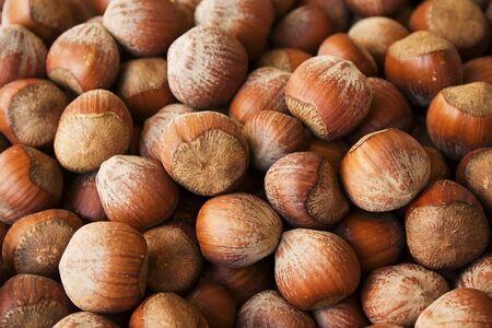 avellan: A lot of brown hazelnuts