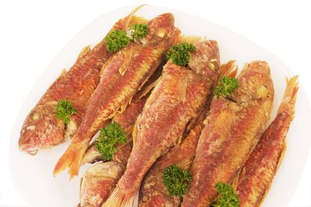 redfish: cooked redfish on the plate with parsley