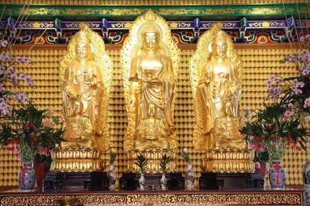 buddha image: Imagen del Buda