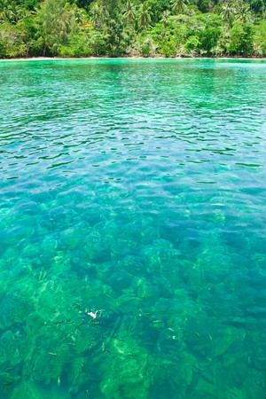 Clear water of the coast of Kradan island, Thailand. photo