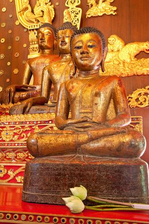 po: Buddha image in church of Wat Phra Sing, Chiang Rai