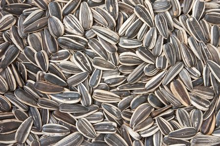 black seeds: Sunflower seeds Stock Photo