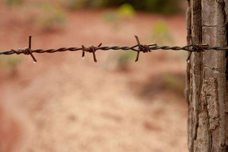 délivrance: Fil de fer barbelé avec le pilier de bois