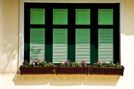 Flower boxes and windows photo