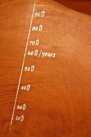 Year circles of old teak wood photo