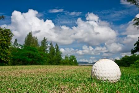 golfcourse: Golf ball on grass field Stock Photo