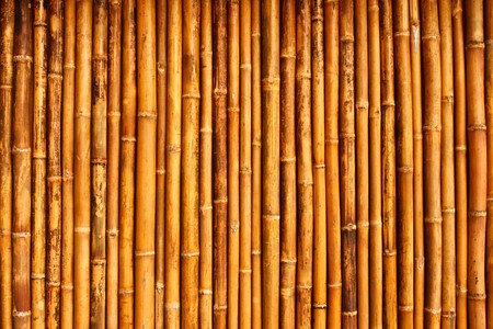 native Thai styel bamboo wall photo