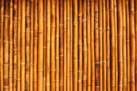 muralla china: pared de bamb� nativo styel Thai