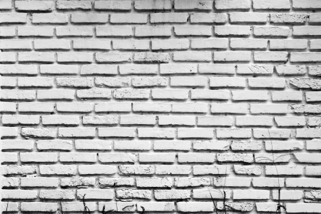 Pattern of old white brick wall photo