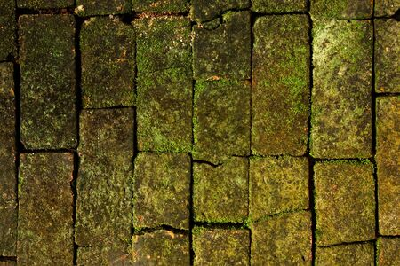 Old brick wall Stock Photo - 8461261