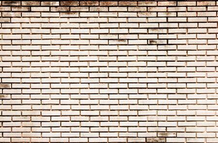 Old white brick wall Stock Photo - 8461241