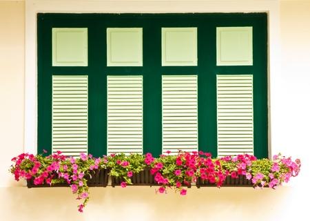 flower box: Flower box on windows