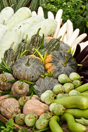 Group of tropical vegetables photo