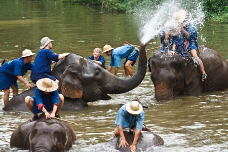 Elephants bathing in  The Thai Elephant Conservation Center (TECC), Lampang, Thailand Stock Photo - 11906211