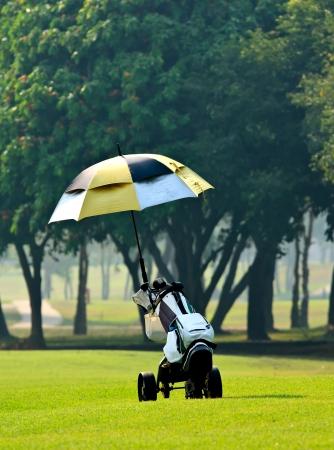 Golf bag on trolley