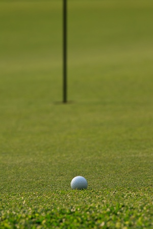 hole in one: Golf ball on green grass