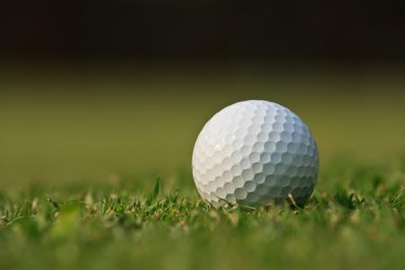pelota de golf: Pelota de golf en la hierba verde Foto de archivo