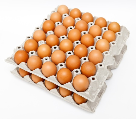 carton: Groep van verse eieren in pater lade