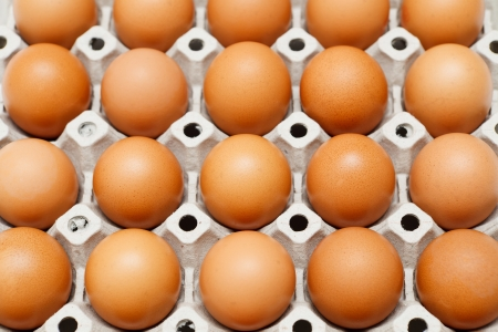 Group of fresh eggs in pater tray Stock Photo - 14416344