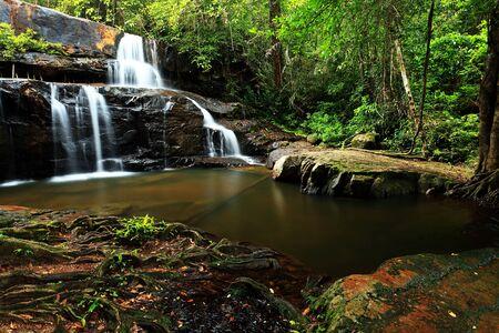 pang: Pang Sida National park, east of Thailand