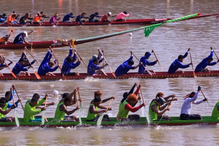 paddler: PIMAI, THAILAND - November  11  Unidentified rowers  in traditional Thai long boats compete during King