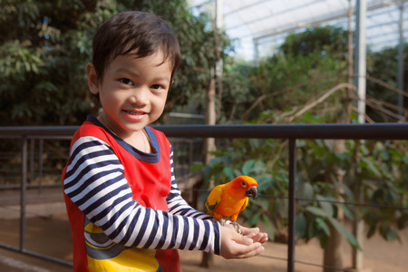 Little Asian boy play with bird in zoo photo