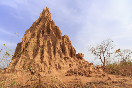 Big anthill with blue sky in background