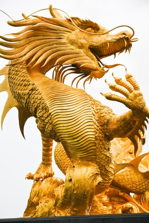 Golden dragon photo