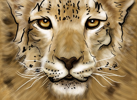 Drawing puma head in photoshop with multi color