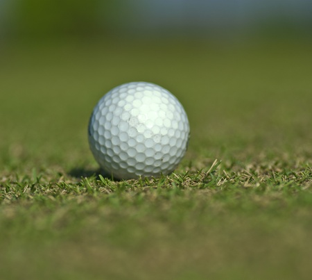 Golf ball on grass close up with shallow focus photo