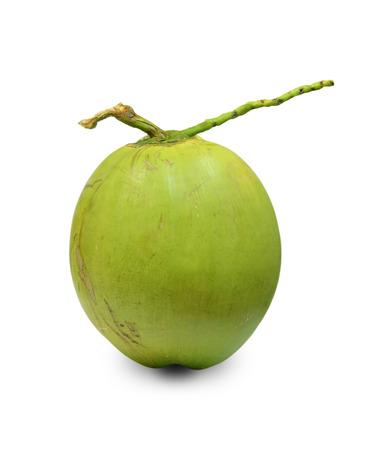 Coconut Fruit on white background. photo
