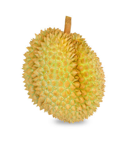 Durian isolated on white background, fruits in South East Asia photo