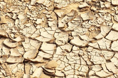 barrenness: Cracked earth background