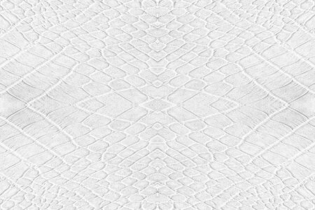 backcloth: white leatherette texture for background