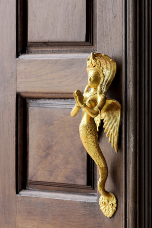 old wooden entrance door with antique gold door handle